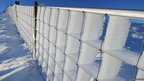 Rime ice on a fence