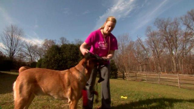 War veteran with her dog