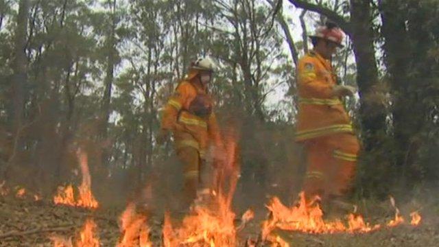 Firefighters in Australia