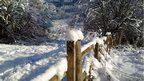 Snow on gate