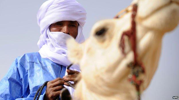 Tuareg on camel