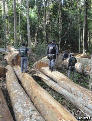 Officers involved in a seizure of suspected illegal logging (Brazil) (Image: Reuters)