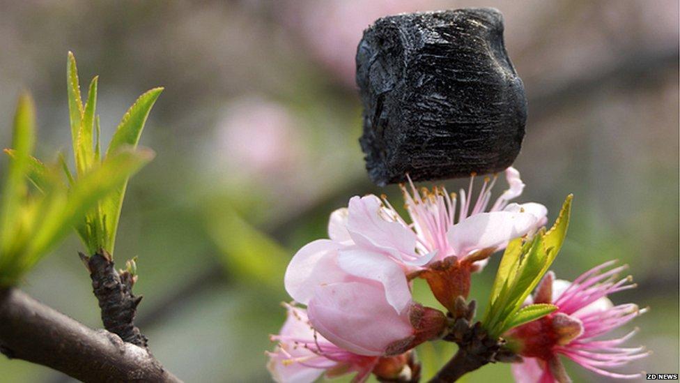 Carbon aerogel Credit: ZD News