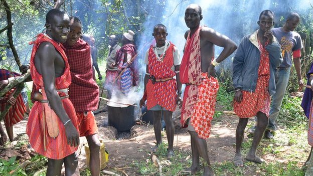 Maasai men prepare cow meat to feed the protesters - 90% of Maasai in Loliondo depend on raising cattle