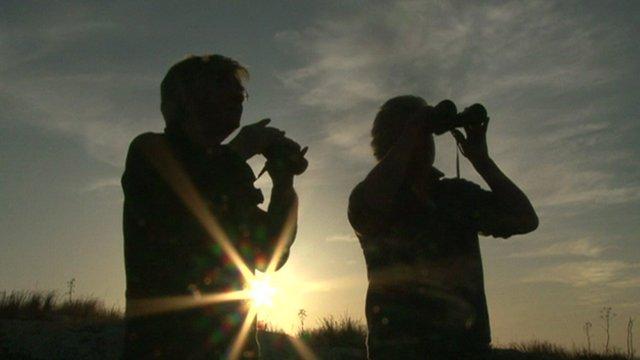 Bird watchers in Malta