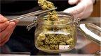 post-image-Will legalised marijuana lead to an economic boom?