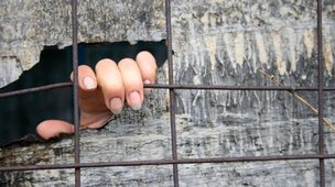 A hand of someone kept in solitary confinement showing through a crack in a wooden board