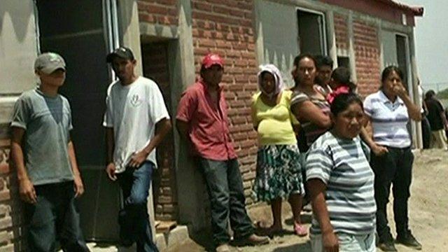 People outside tomato plant