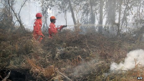 Indonesian firefighters battle forest fires in Pekanbaru, capital of Riau province located on Indonesia's Sumatra island, 20 June 2013