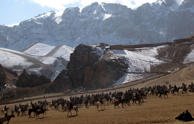 Horses on the mountainside