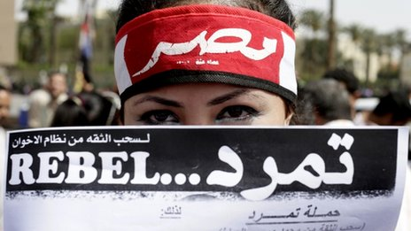 Protester holds up a Tamarod petition in Cairo (17 June 2013)
