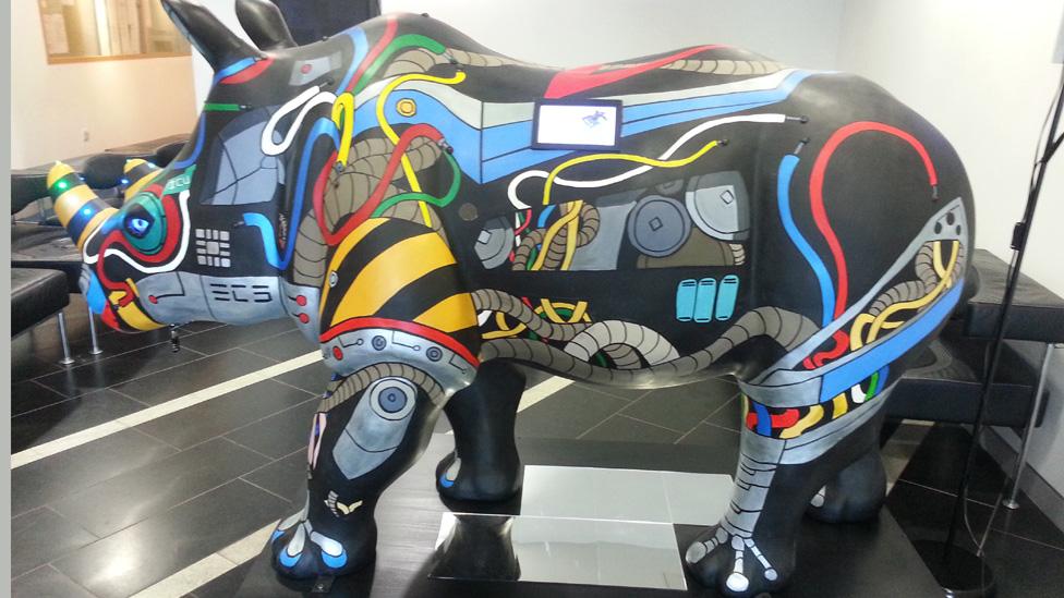 University Rhino