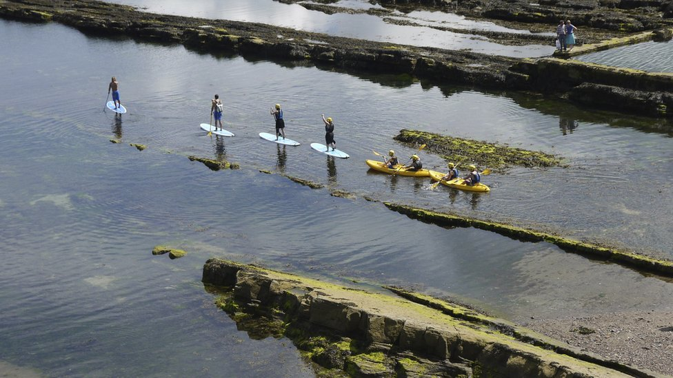 People on paddle boards and canoes