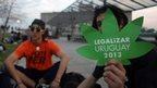 post-image-UN narcotics body warns Uruguay over marijuana bill