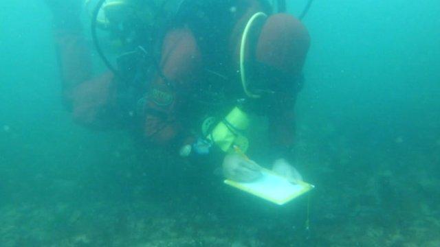 A diver collates shipwreck data