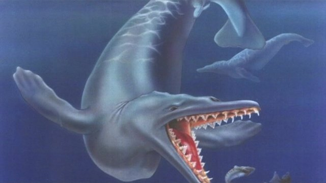 Artist's impression of what one of the sea mammals looked like