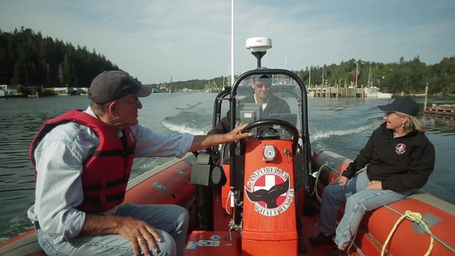 The Campobello Island Whales Rescue team