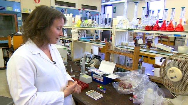 Scientist Phillipa Wood at food testing laboratory