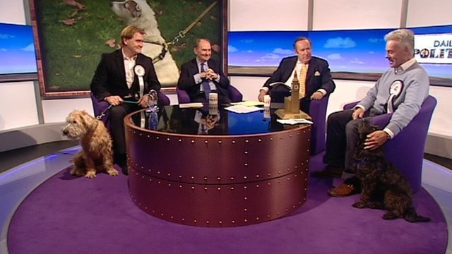 Westminster dogs of the year and owners