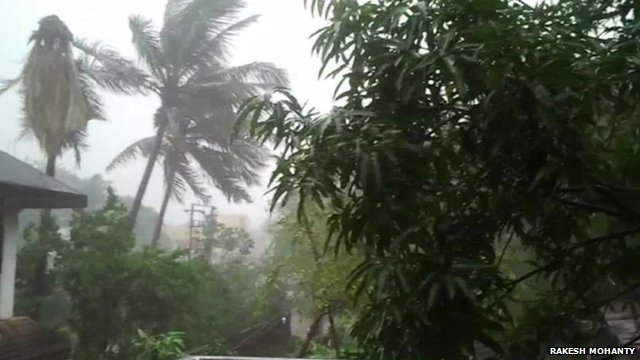 Trees blown about by storm force winds