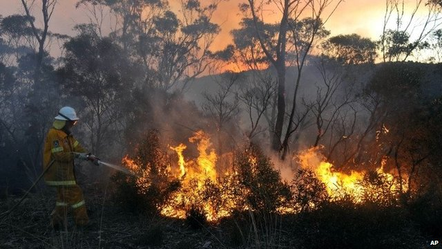 A New South Wales Rural Fire Service volunteer puts out a fire in the town of Bell, Australia, on 20 October 2013