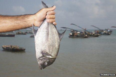 Arm holding fish