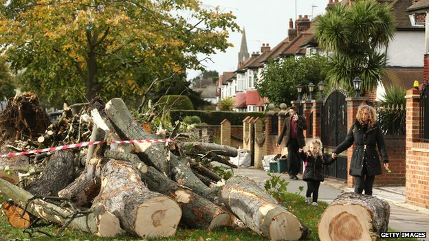 Debris of fallen trees in Hounslow, west London