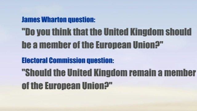 Referendum question options