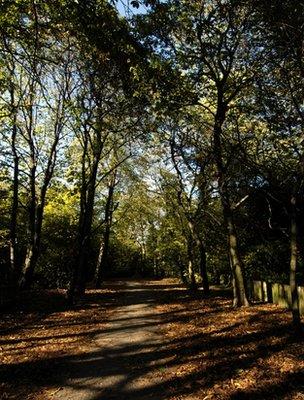 Holland Park, London (Image: BBC)