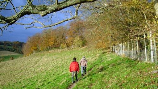 A field in the UK