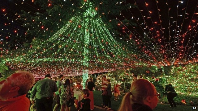 Canopy of Christmas lights