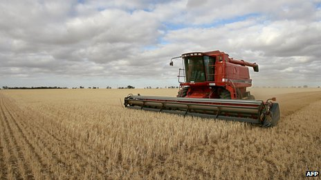 A wheat farm in Australia