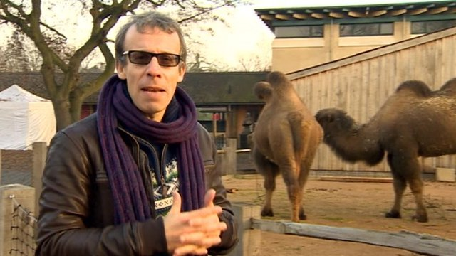 David Schneider at London Zoo
