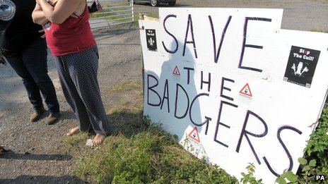 Badger cull protest