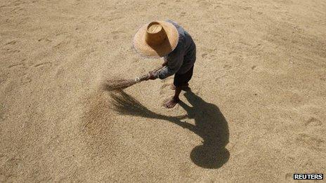 A farmer dries rice grains in Buriram province ( file image)