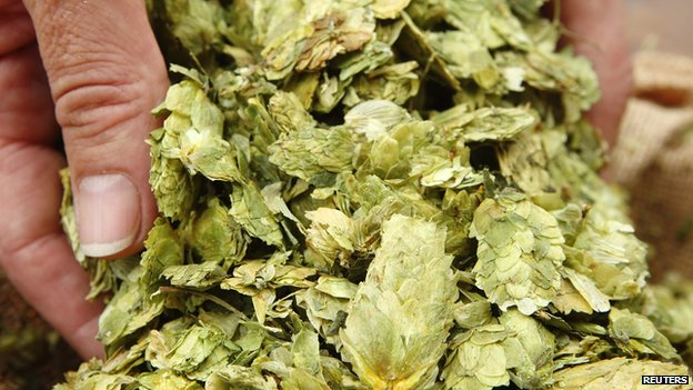 A handful of hops