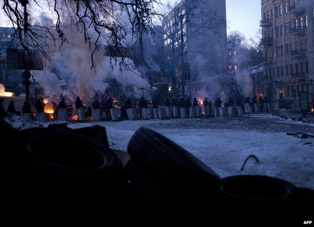 Riot police face protesters in Kiev, 31 January