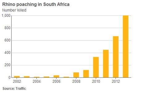 Rhino poaching chart