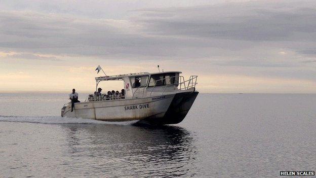 Shark dive boat in Fiji