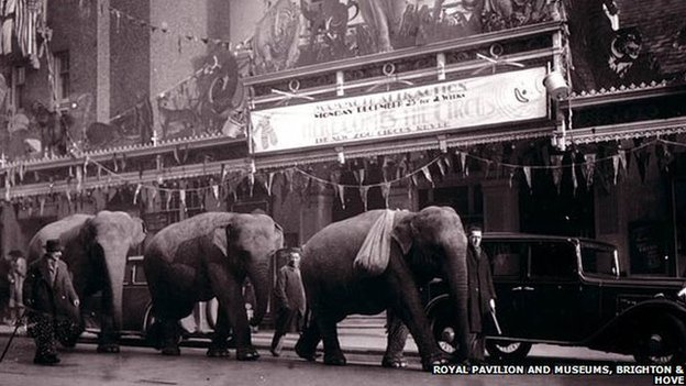 Elephants outside the Brighton Hippodrome