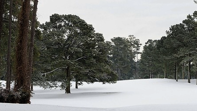The Masters 2014: The demise of the President Eisenhower tree