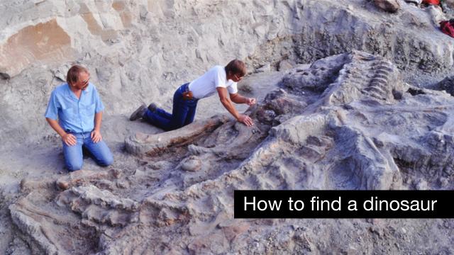 Workers on the original excavation of the Wankel T-Rex in Montana
