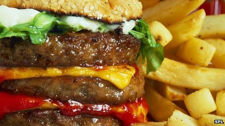 A burger and fries