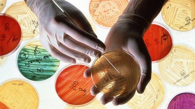 Lab research into new antibiotics