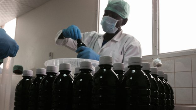 Morphine production