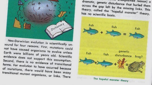 ACE Textbook