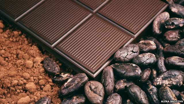 Chocolate, cocoa beans and cocoa powder
