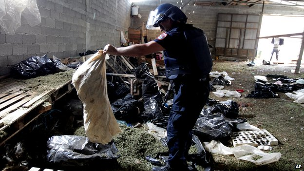 Albanian police seize marijuana in a storage building in the lawless village of Lazarat, 230 kilometres (140 miles) south of capital Tirana, on 18 June 2014