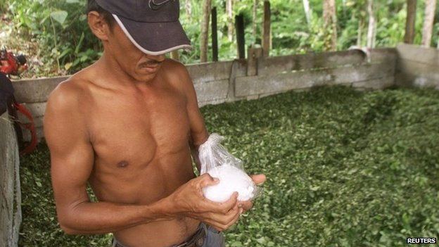 A Colombian peasant holds a bag of coca paste at a makeshift drug lab in Putumayo on 30 January, 2003