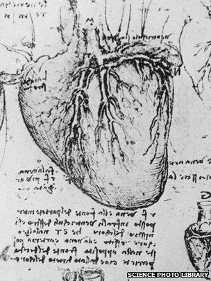 Leonardo da Vinci's diagram of the heart and blood vessels